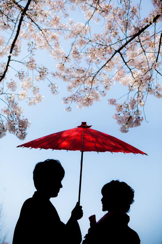 京都好日 前撮り(003/040)