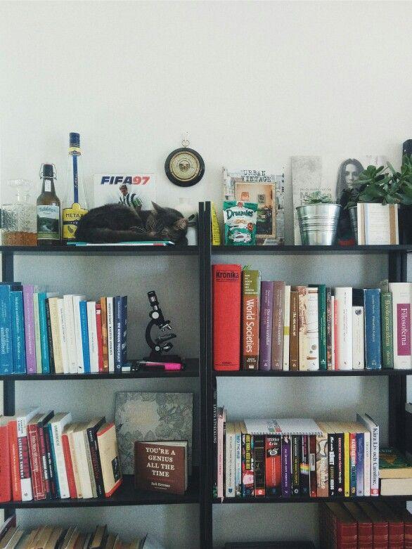 #book #shelf. #sleeping #cat. #books. #plants.