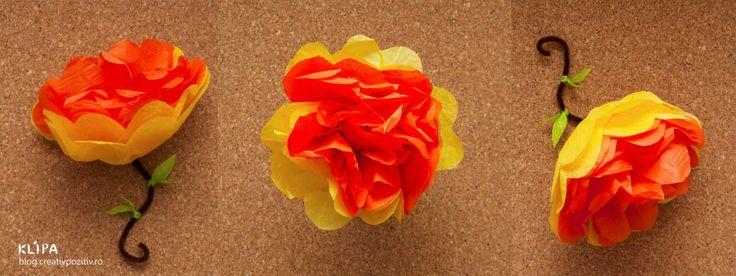 Flori din hârtie de mătase (tissue paper)