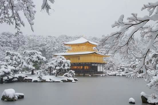 """In a snowy day ~ Kinkaku-ji (金閣寺, """"Temple of the Golden Pavilion""""), or formally Rokuon-ji (鹿苑寺, """"Deer Garden Temple""""), a Zen Buddhist temple in Kyoto, whose top two floors are completely covered in gold leaf, to show Yoshimitsu's great authority. Built in 1397 as a residence for shogun Ashikaga Yoshimitsu.(Photo by Fumihiko Ueno, December 31, 2010)"""
