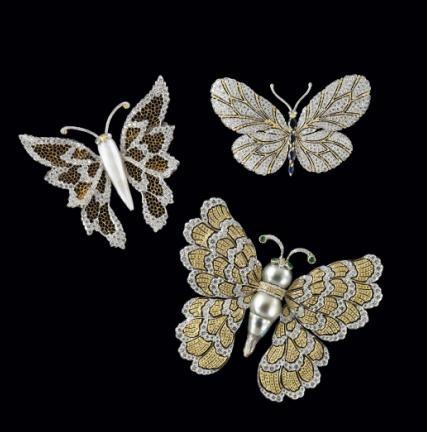 brooches: Brooch Pin, Jewelry Butterflies, Jewelry Creatures Butterflies