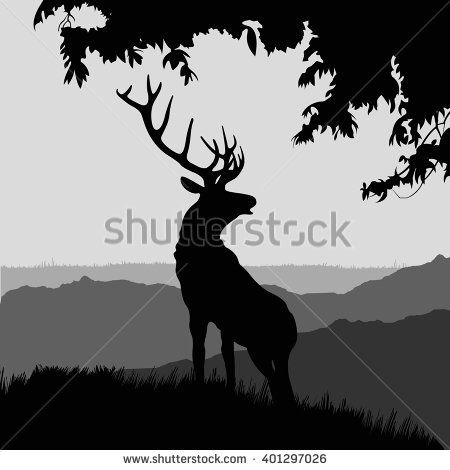 Image result for google images black and white elk and tree