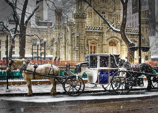 Horse Carriages waiting at the Water Tower