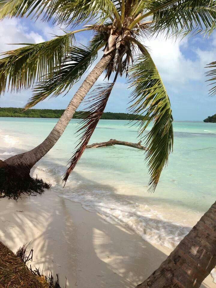 Kari LikeLikes: Bahia Honda State Park, Florida Keys