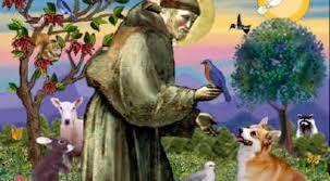 Gawęda jak nasze psy i koty: Lis i święty Franciszek