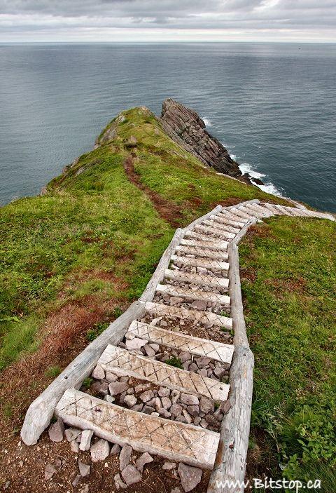 East Coast Trail, Cobbler Path Newfoundland