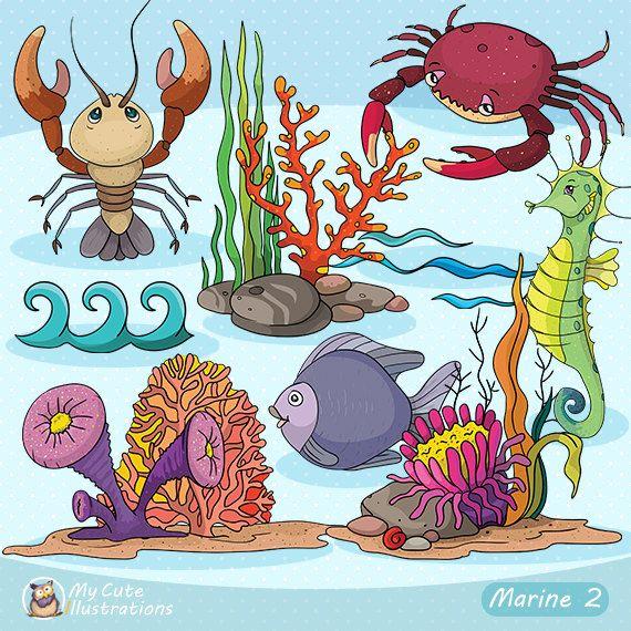 Under the Sea Clipart Sea animal clipart Marine by GraficaStore
