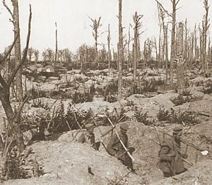 Colour and Life in a Devastated Landscape:   German soldiers carrying ladders through trenches in a smashed up wood on the Ypres Salient battlefield, 1915.  In the fighting zones the devastation caused to the landscape created a wasteland of churned up soil, smashed up woods, fields and streams. Few elements of the natural world could survive except for the soldiers who had little choice but to live in an underground network of holes, tunnels and trenches. In most cases the only living…
