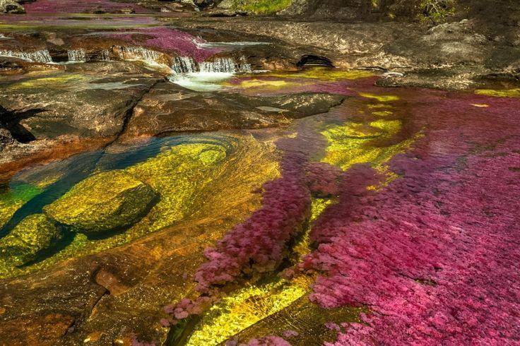 Texturas del río