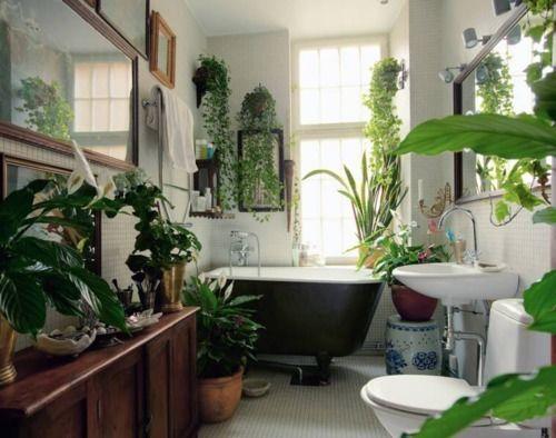 色々な観葉植物の鉢植えを置き、外側が黒で内側が白い浴槽のバスルームです。白い壁にはツタと色々な額がかけます。床や窓の縁は白く、茶色の棚を置いています。