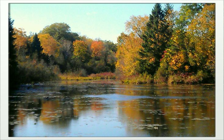 This picture was taken in Erin, Ontario during a lovely walk down by the water.