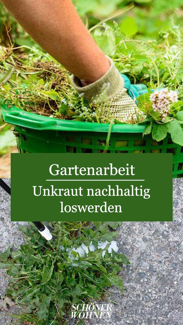 Unkraut Entfernen Mit Unkrautvernichter Darf Man Das Bild 3 Unkraut Entfernen Unkraut Gartenarbeit