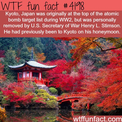 Kyoto, Japan -  WTF!?! weird & interesting facts