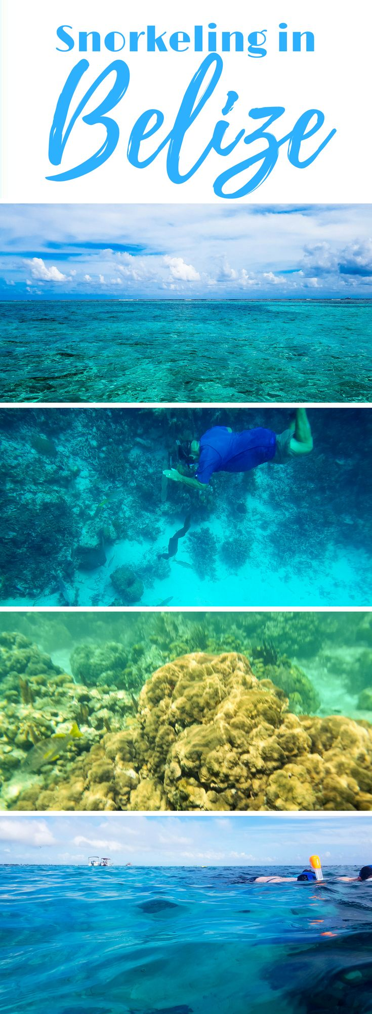Snorkeling in Caye Caulker Natural Reserve | caye caulker | snorkeling in belize | diving in the blue hole belize | snorkeling in caye caulker belize | where to snorkel in belize | shark alley belize | swim with sting rays in belize | swim with sharks in belize | nurse sharks belize |