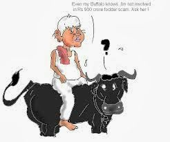 Bharatiya Jan: #BiharAgainstLaloo: #FodderScam Updated: The Massacre of Bovines: 1996's Bihar Fodder Scam by Lalu Prasad Yadav #India #Bihar #Jharkhand #Ranchi #Patna #NaMo4PM