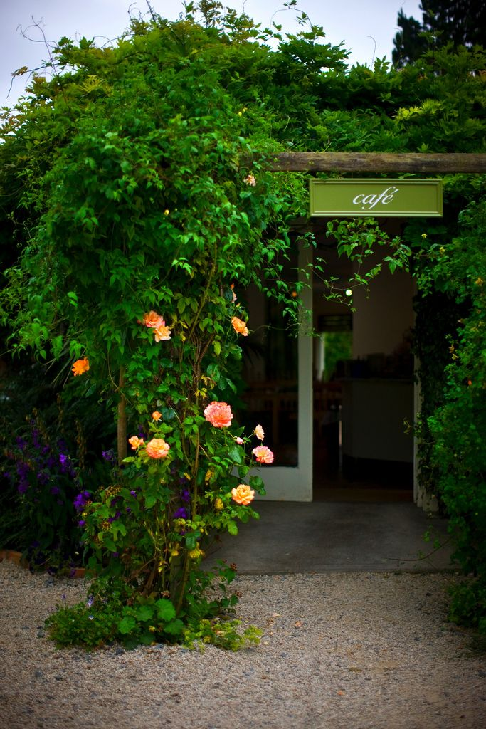 Garden Café at Mount Usher Gardens | Ushers and Ireland