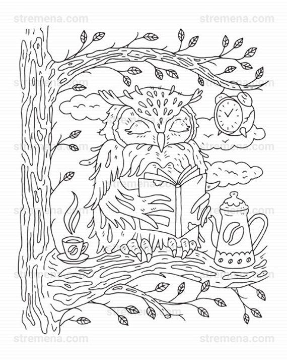 Lynx Wildcat And Owl Printable Animal Coloring Pages Owl