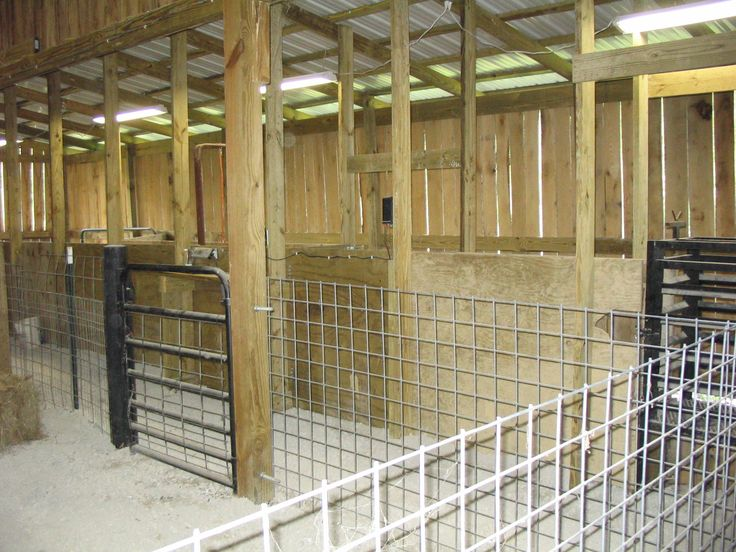 panels and t posts for stalls...