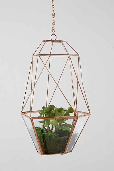 Pretty hanging terrarium in copper.