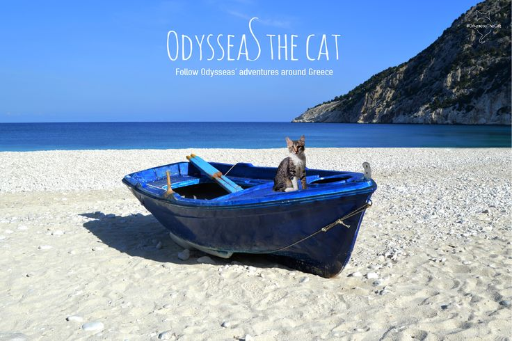 #OdysseasTheCat and his Greek island adventure lives on! Stay on his tail!