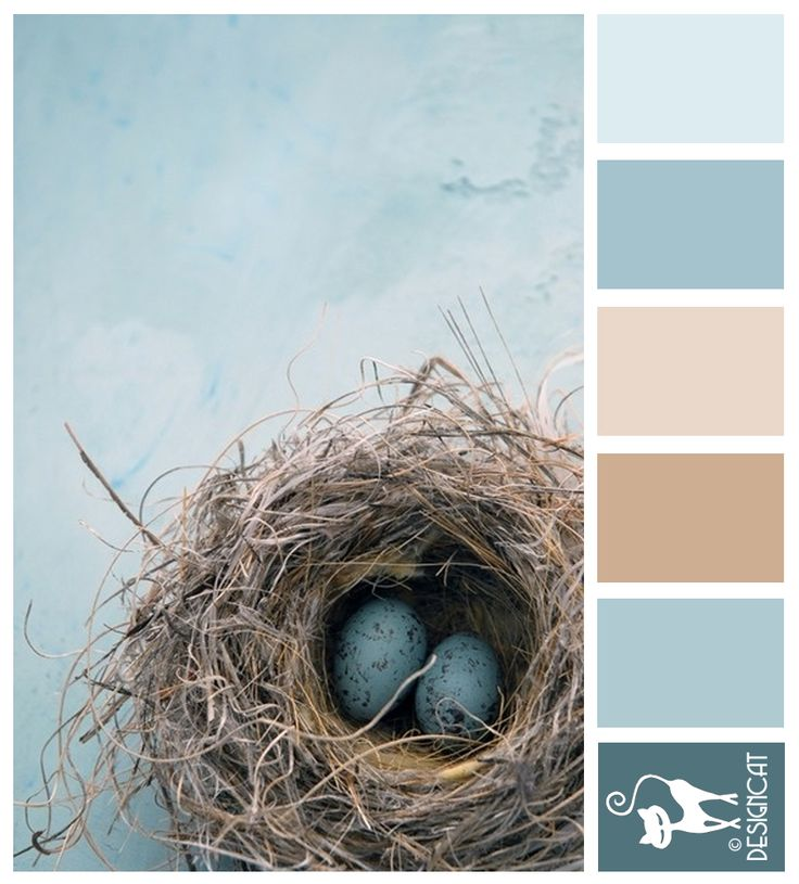 Robins Nest - Blue, Pastel, Steel, Beige, Brown, Coffee, Teal - Designcat Colour Inspiration Board