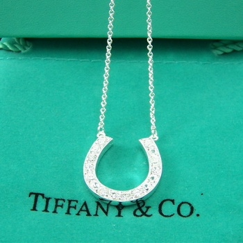 Tiffany's horse shoe necklace, want it!