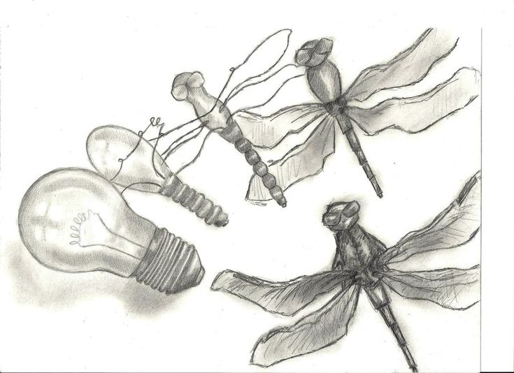 Morphing Objects Drawing Metamorphosis drawing