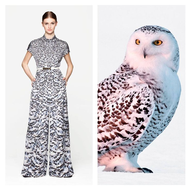An owl in its natural habit poses on a silk micropattern jumpsuit: discover Larusmiani FW2014/15 Women's Collection inspiration.  #larusmianimoments #inspiration #trueluxury Discover more www.larusmiani.it