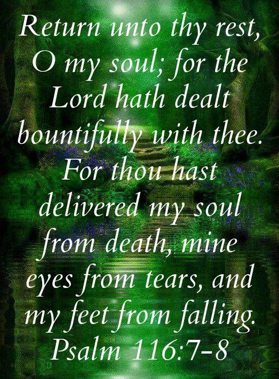 verse analysis of psalm 1191 8
