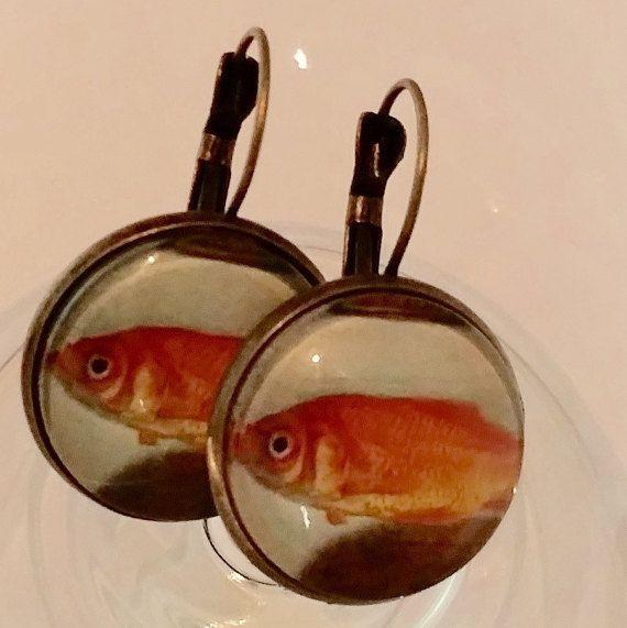 1000 id es sur le th me bocaux de poissons rouges sur for Bocal rond poisson