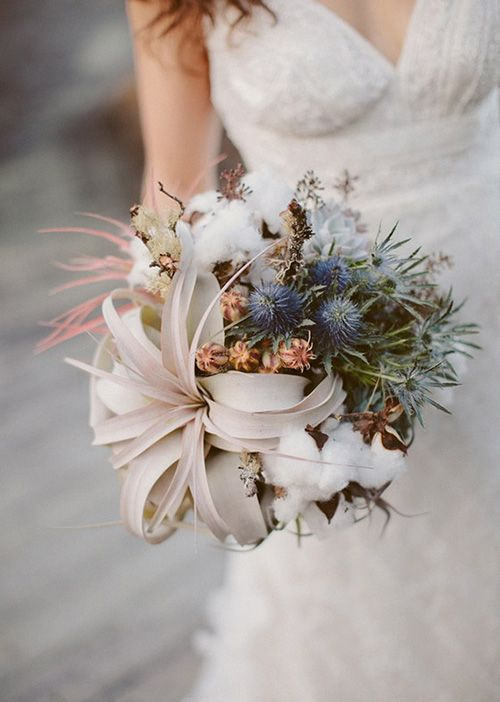 designer for balenciaga In Season Now: Wedding-Worthy Air Plants | Air Plants, Thistles and Wedding Bouquets