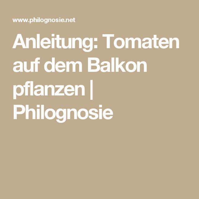 Die 25+ Besten Ideen Zu Tomaten Pflanzen Balkon Auf Pinterest ... Tomaten Balkon Pflanzen Tipps