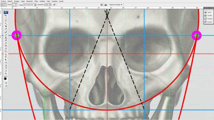 -La #cabeza - Cánones de proporción y puntos de referencia... #anatomía para #artistas #dibujarlacabeza #drawingthehead #drawing #anatomy
