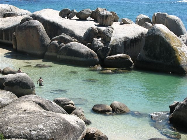 African Penguins at Boulders Beach, Simon's Town, Cape Town   Africa.. In Your Wildest Dreams  http://www.southernskyadventures.com/