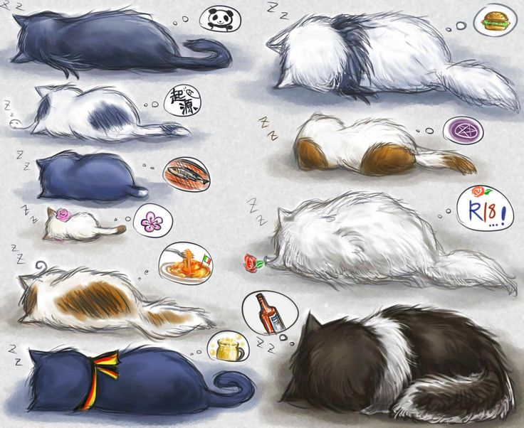 This is so cute!!! I'm working on making the countrys as clay cats so this will be an awesome reference for sizes.