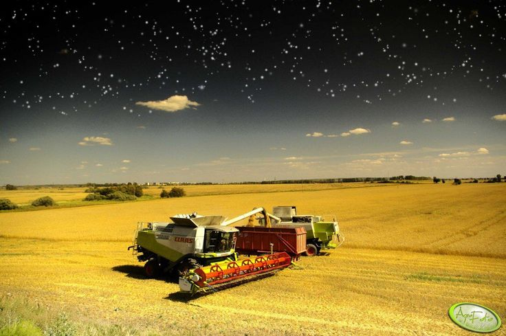Claas <3 http://www.agrofoto.pl/forum/gallery/image/187259-claas/  #Claas #kombajn #uprawa #rolnictwo