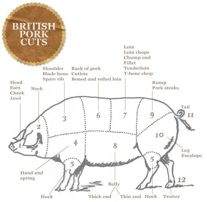 The Ginger Pig Meat Cuts - British Pork Cuts