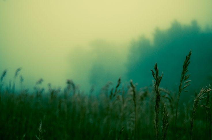 saran wrap afternoon Photo - Visual Hunt