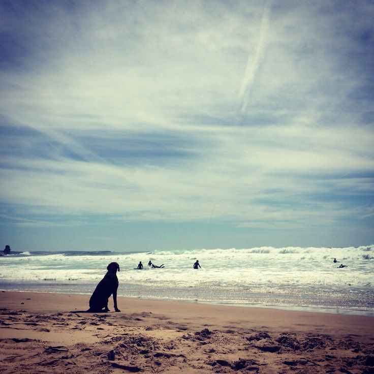 Arriffana beach, Portugal