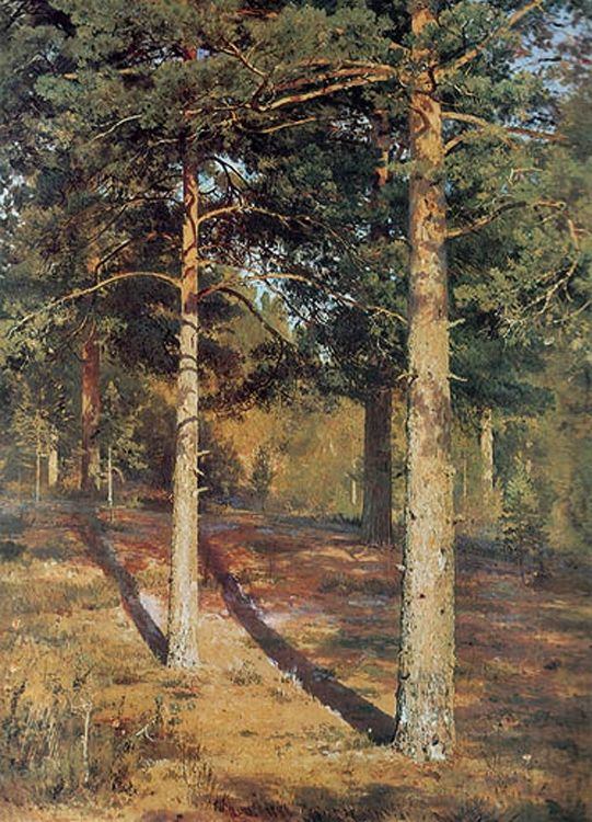 Ivan Shishkin - The Sun-lit Pines (1886)