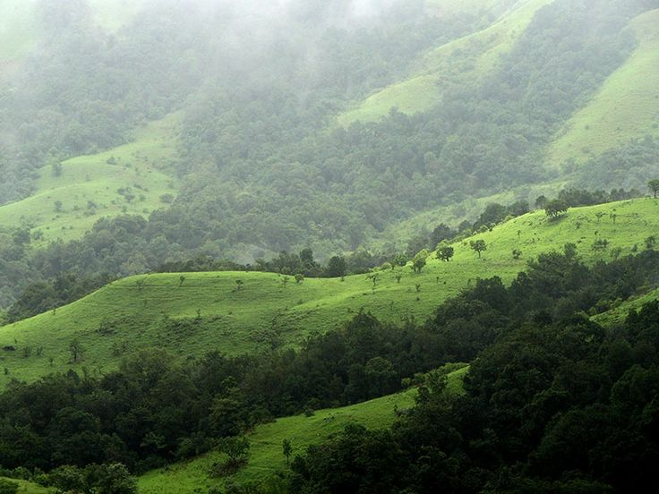 Kudremukh National Park - in Karnataka, India