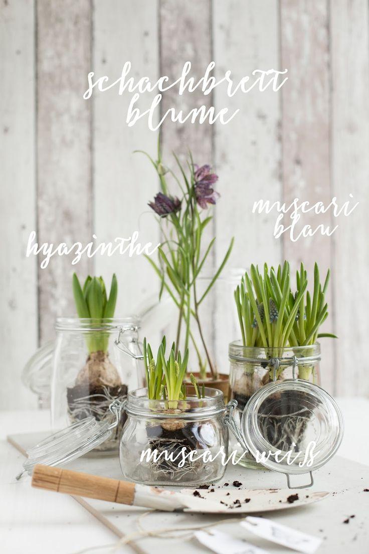 DIY Frühlingsgarten für Zuhause / detail lovin'