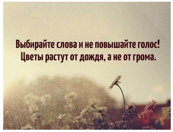 Bez Slov Life Quotes Wisdom Quotes Wise Quotes