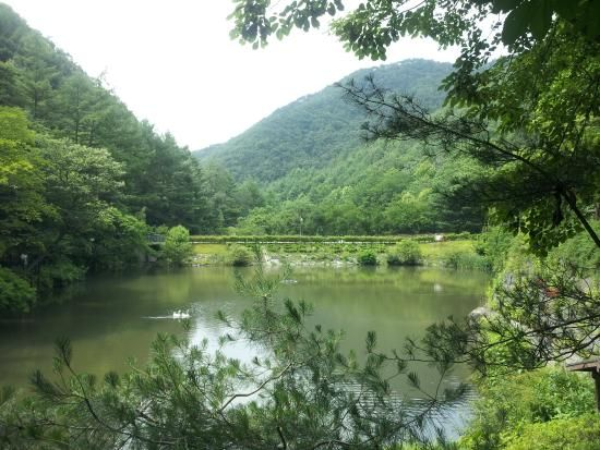 Maninsan Mountain, Daejeon: See 17 reviews, articles, and 3 photos of Maninsan Mountain, ranked No.9 on TripAdvisor among 110 attractions in Daejeon.