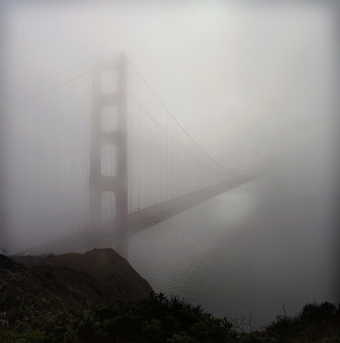 Fog....