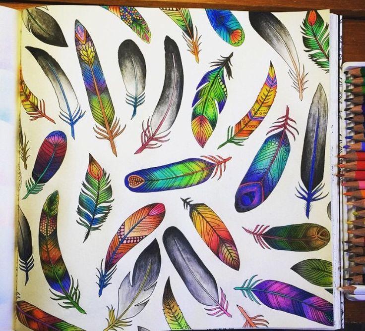 Feathers Enchanted Forest Penas Floresta Encantada Johanna Basford Coloring BooksAdult