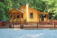 Pet-friendly Asheville vacation cabins