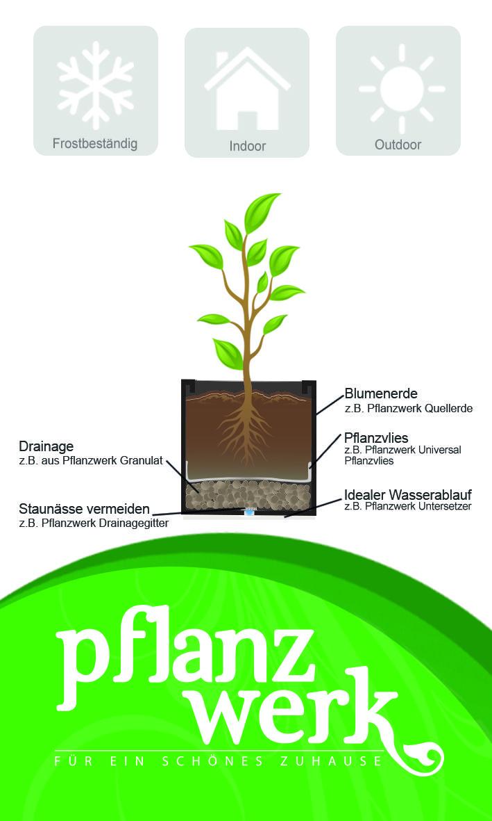 Wie Bepflanzt Man Blumenkubel Blumentopf Pflanzkubel Und Co