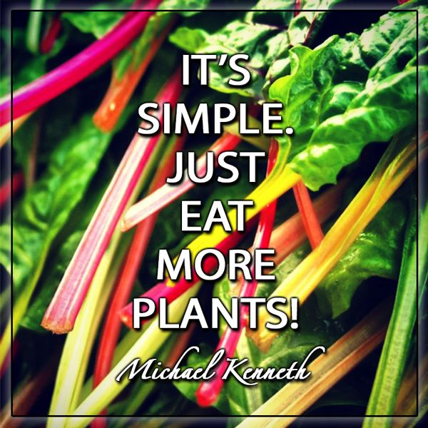 AND drink good V8 juices with berries, and other essential vitamins.