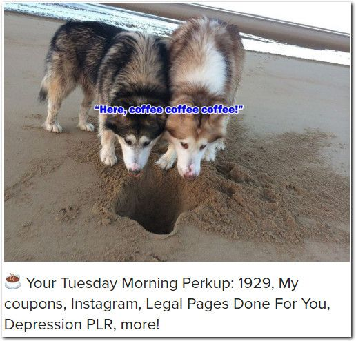 ☕ Your Tuesday Morning Perkup: 1929, My coupons, Instagram, Legal Pages Done For You, Depression PLR, more!